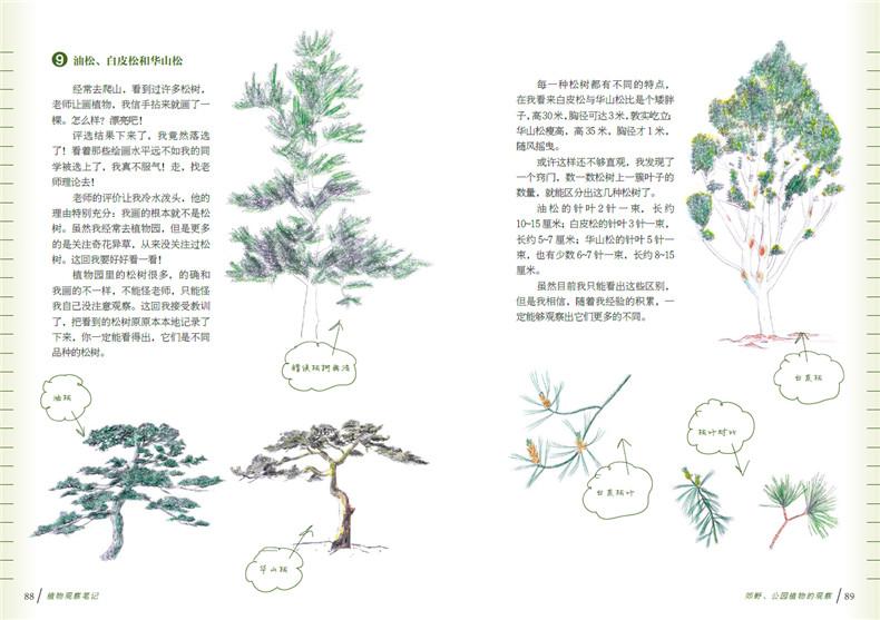 """大叶黄杨和小叶黄杨 9.油松,白皮松和华山松 10.植物中的""""活化石 11."""