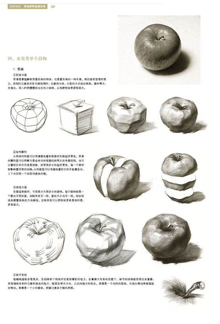 水果素描步骤解析