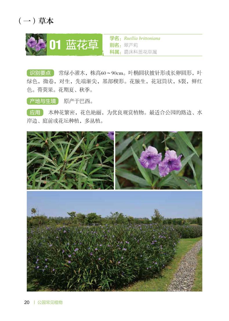 1990年毕业于吉林农业大学,先后在吉林省公主岭农业局,广东省惠州农业