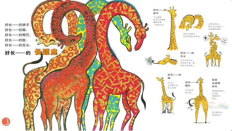 麦田精选图画书大家来逛动物园 〔日〕阿部弘士 文/图 〔日〕中野正隆